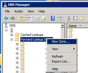 Start New DNS Zone Wizard